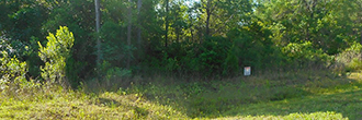 Tranquil Corner Lot located 1 Mile From The Saint Johns River
