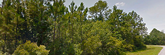 Half Acre Residential Lot in Milton Florida