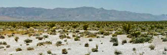 Quiet Desert Getaway Near Pahrump