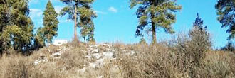 Two Acre Land Just North of Hwy 160 in Southern Colorado