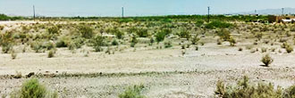Explore this One Acre Find Between Buckeye and Tonopah