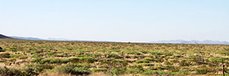 Almost 6 Acres of Private West Texas Land