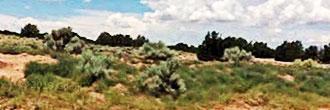 Beautiful 3 Acre Parcel in Arizona Paradise