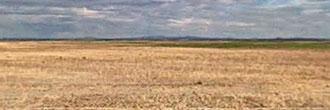 Large Acreage Parcel in Central Oregon