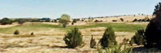1+ Acre Hideaway near Concho Lake