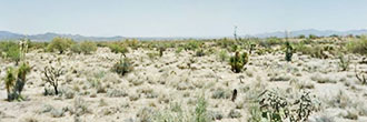 Beautiful 1 Acre Plot in Arizona Desert