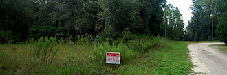 Large Lush Lot In Up and Coming Development