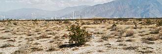 Convenient 1 Acre Found in Gorgeous California Desert