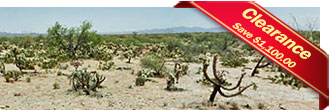 Remote Acreage in Popular Pima County