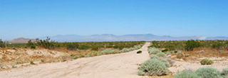 Flat, Open Property About 30 Minutes from California City