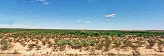 10 Acres in Spacious West Texas