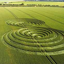 LC-Crop-Circle248
