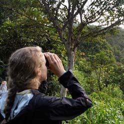 birdwatching248