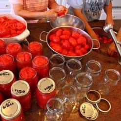 tomato-canning_248