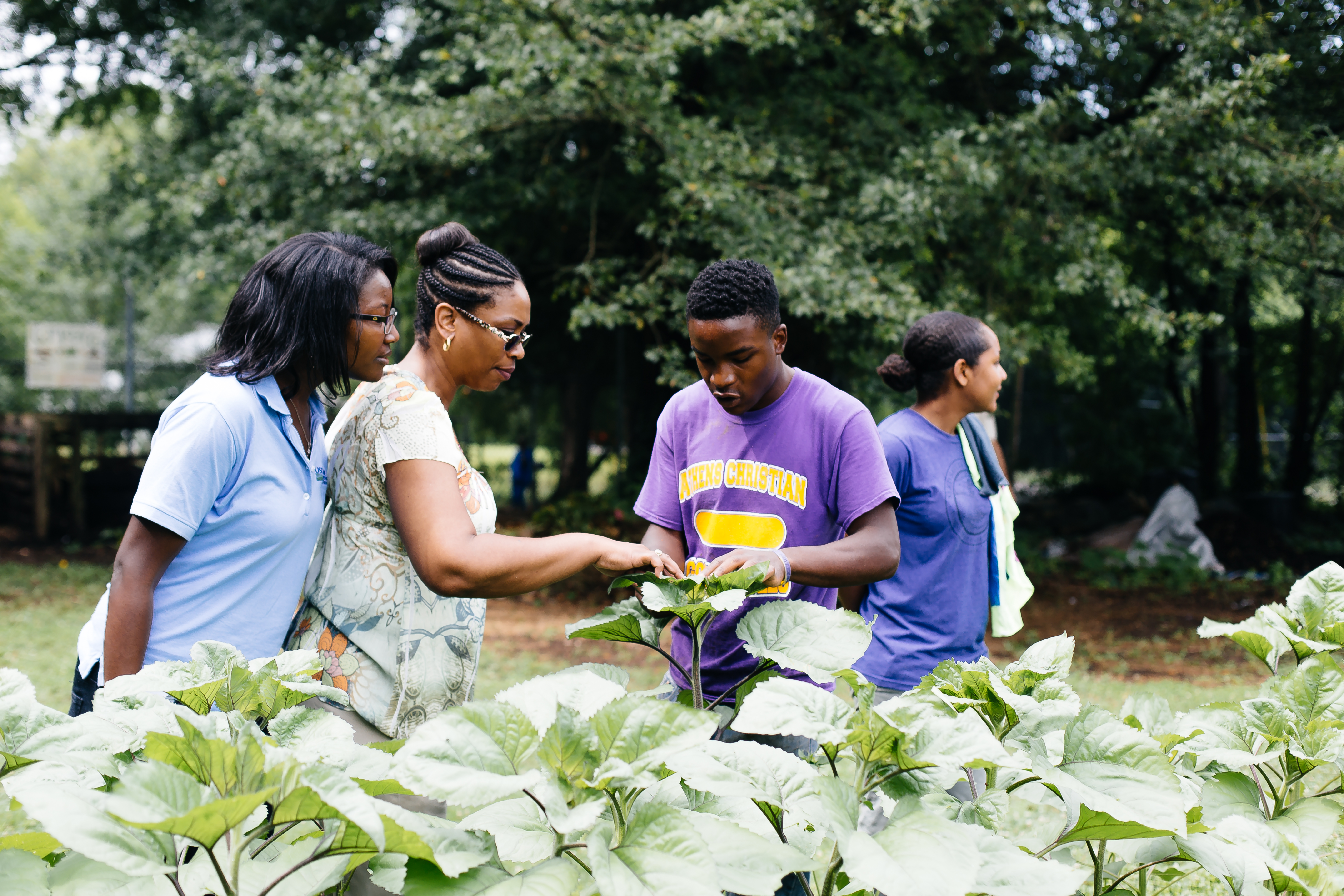Athens Land Trust Young Urban Farmer Dontae Meadows gives a tour of the West Broad Garden to visiting USDA Farm to School staff. Christina Conell/USDA Farm to School