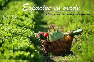 Huerto ecolc3b3gico