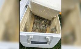 Cae presunto vendedor de pescados con hielera llena de dólares