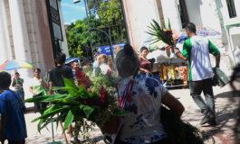 """Con """"lluvia"""" de flores festejan el Día de Difuntos en la capital"""
