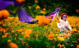 ¿Por qué China produce el 75% de la flor del Día de Muertos?