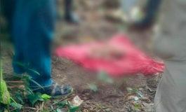 Encuentran feto a la orilla de una quebrada en Cortés