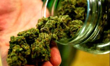"""Nueva droga: """"Crispy"""" es 15 veces más fuerte que la marihuana"""