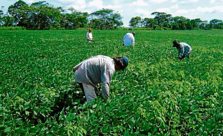 Anuncian lanzamiento de parque agroalimentario en el norte