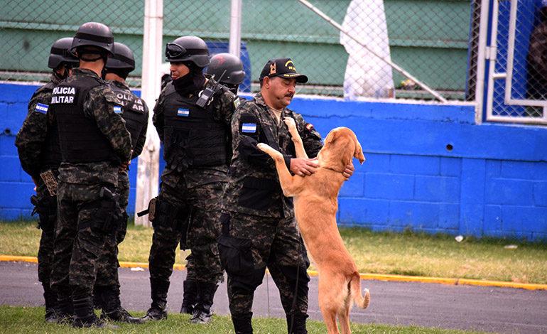 """Este """"perrito"""" de la Policía Militar del Orden Público se puso a brincar al escuchar la música norteña en el estadio."""