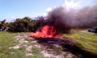 Incineran más de 80 libras de marihuana en Atlántida