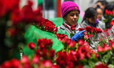 San Valentín, un alivio para la crisis en la frontera con Venezuela