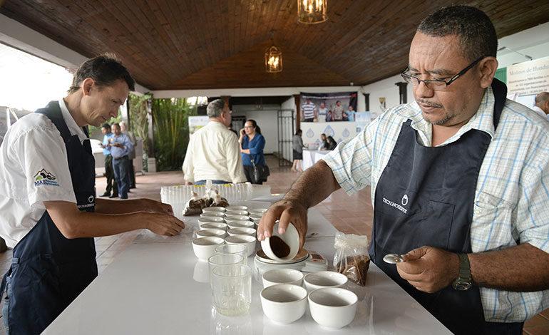 EEUU apoyará a más de 32 mil productores hondureños de café y frijol