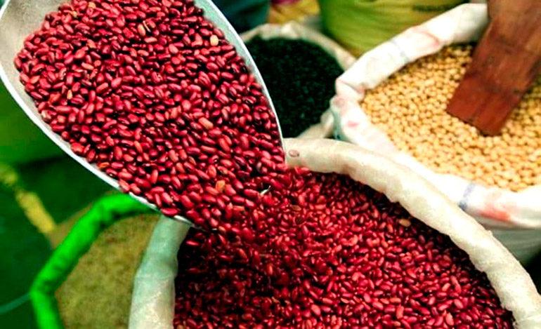 Semilla híbrida para combatir retos de seguridad alimentaria