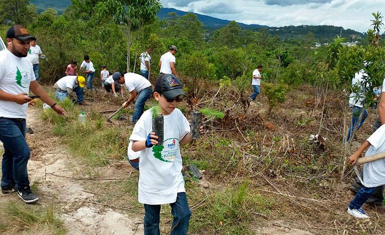 A Siguatepeque llegó jornada de reforestación EEH