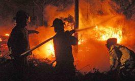 Incendios arrasan con 60,665 hectáreas de bosque y pasto en Honduras