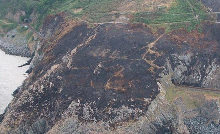 Incendio forestal revela una gigantesca señal que estaba oculta desde hace décadas