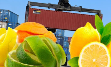Promueven exportación de la cáscara de limón