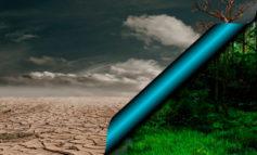 ALERTA: LAS PLAGAS SE MULTIPLICAN Y EL CAMBIO CLIMÁTICO AMENAZA LOS ECOSISTEMAS VITALES DE NUESTRO PLANETA