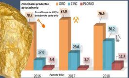 Cierre de empresas mineras preocupa en MiAmbiente