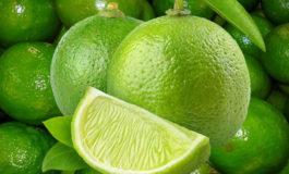 En enero iniciaría venta de limón persa a EEUU