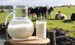 Fenagh: Producción de leche llega a 1.5 millones de litros al día
