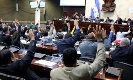 Congreso Nacional entregará Gran Cruz con Placa de Oro a familiares de José Rafael Ferrari