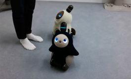 Presentan un robot para generar afecto y ayudar a vencer la soledad