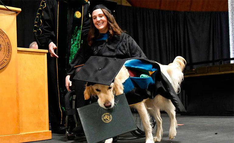 Perro de servicio recibe diploma de maestría en Nueva York