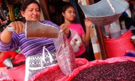 El Salvador es el mejor mercado para el frijol rojo