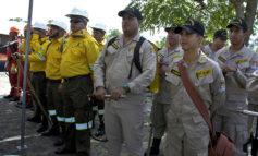 5,000 hombres listos para proteger bosques