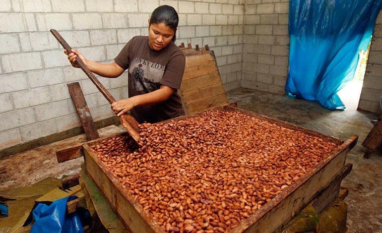 Según la FAO: Mujeres son la clave para lograr un mundo sin hambre