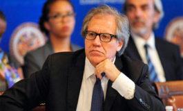 Almagro dice la crisis Nicaragua podría desembocar en su expulsión de la OEA