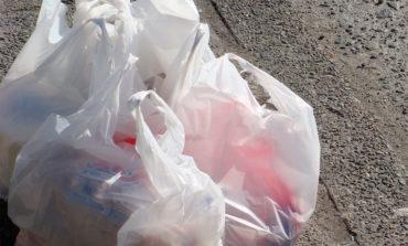 El estado de Nueva York, dispuesto a deshacerse de las bolsas de plástico