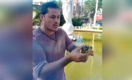 Ceibeño pide preservar fauna y cuidar obras públicas que embellecen la ciudad (Video)