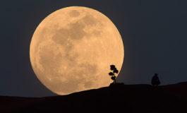 Eclipse total de Luna la noche del 20 de enero, el último hasta 2021