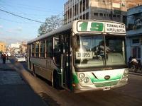 Linea 19